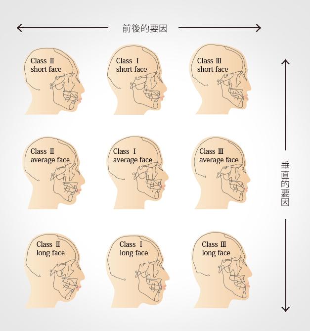 菅原の分類